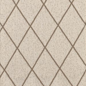 Picture of Silver Screen Tan Fabric Swatch